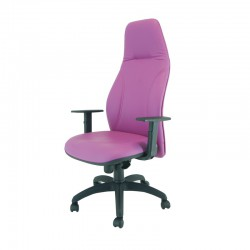 sillón de dirección DN-VI