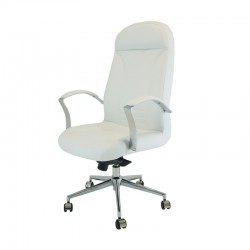 sillón de dirección DYD-VI